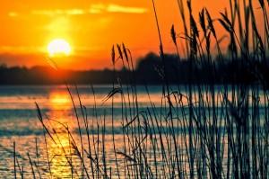 fototapeta - jezioro o zachodzie