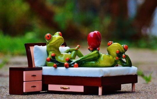 Korzyści płynące z posiadania dębowego łóżka
